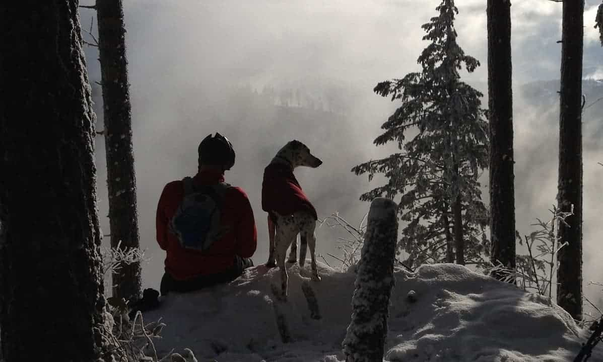 Man with his dog sitting in a snowy forest.