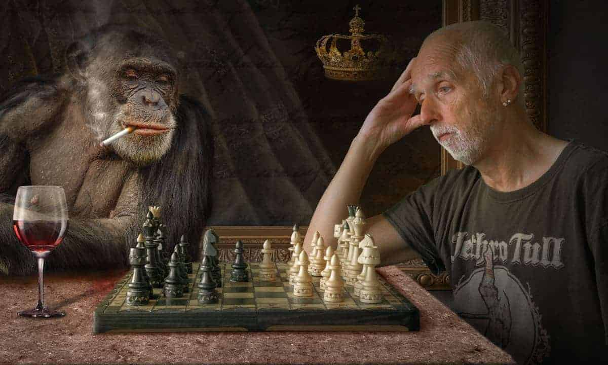 Gaming Hobbies For guys- Chess With Chimp