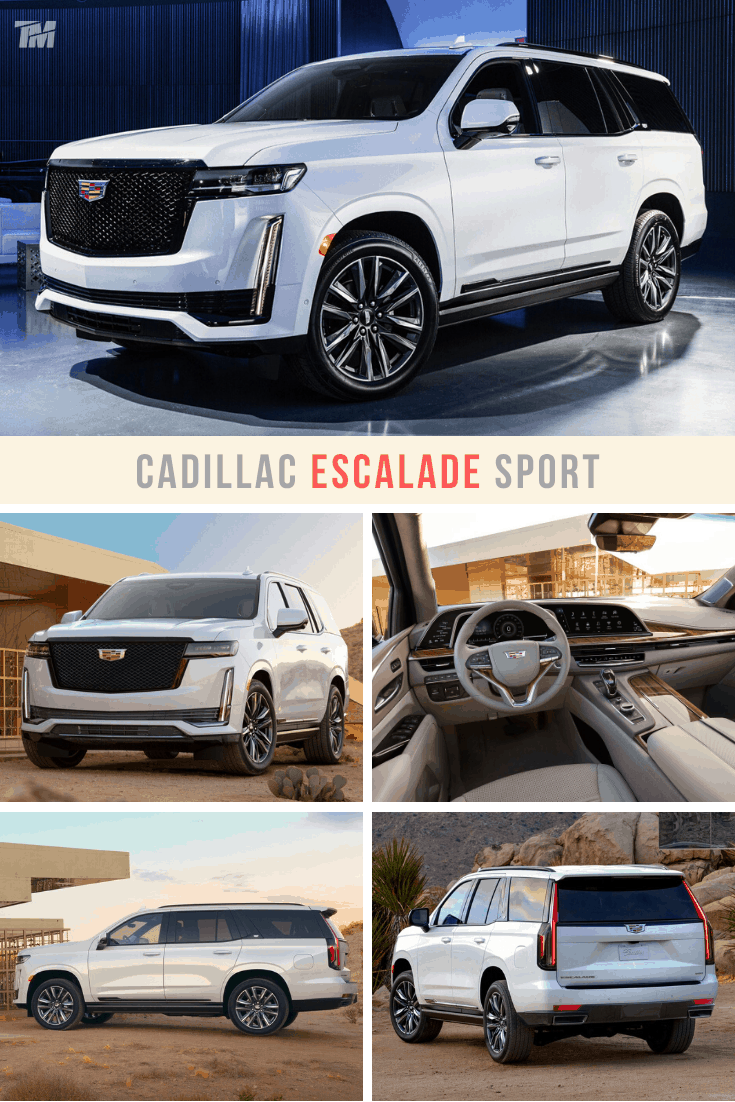 cadillac escalade best luxury SUV white
